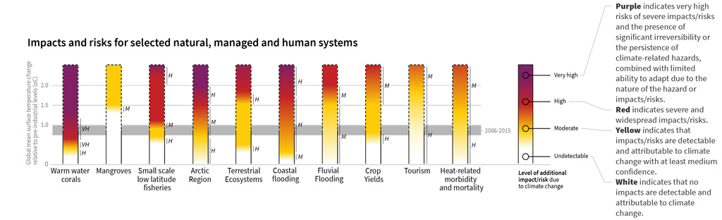How the level of global warming affects impacts and/or risks associated for selected natural, managed and human systems. Adapted from IPCC (pdf)