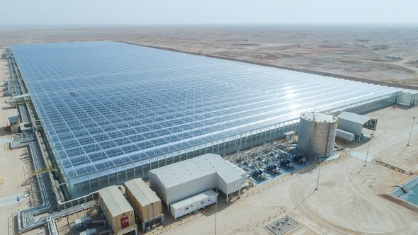 Part of the Miraah soler thermal project in Oman. Credit: GlassPoint Solar